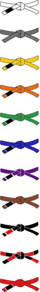 Jiu Jitsu Belt system